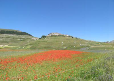 Le meraviglie di Montegallo e Monti Sibillini3
