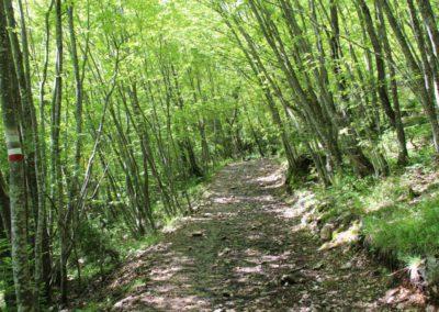 Trekking a Piedi a Montegallo sui Monti Sibillini10