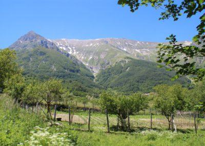 Trekking a Piedi a Montegallo sui Monti Sibillini15