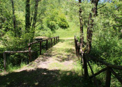 Trekking a Piedi a Montegallo sui Monti Sibillini18