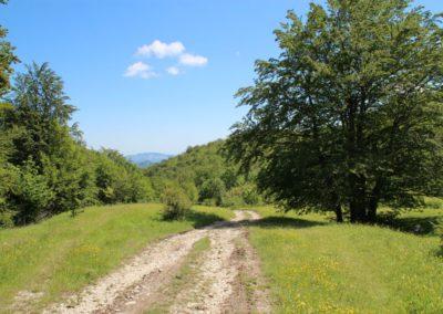 Trekking a Piedi a Montegallo sui Monti Sibillini2