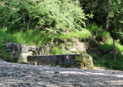 Trekking a Piedi a Montegallo sui Monti Sibillini4