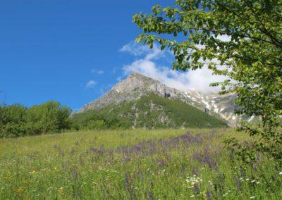 Trekking a Piedi a Montegallo sui Monti Sibillini6
