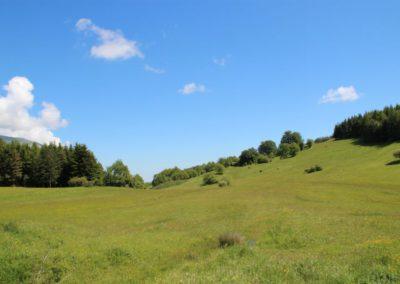 Trekking a Piedi a Montegallo sui Monti Sibillini7