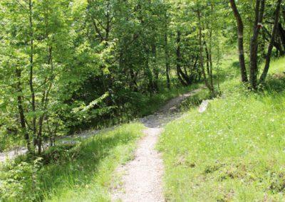 Trekking a Piedi a Montegallo sui Monti Sibillini9