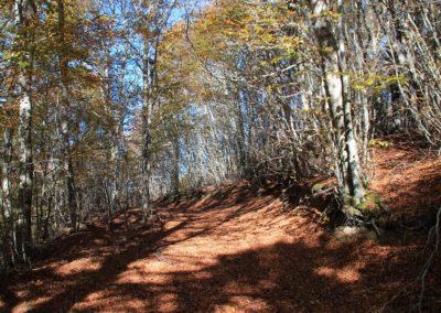 Trekking in Mountain Bike a Montegallo sui Monti Sibillini6