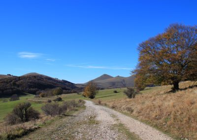 Trekking in Mountain Bike a Montegallo sui Monti Sibillini8